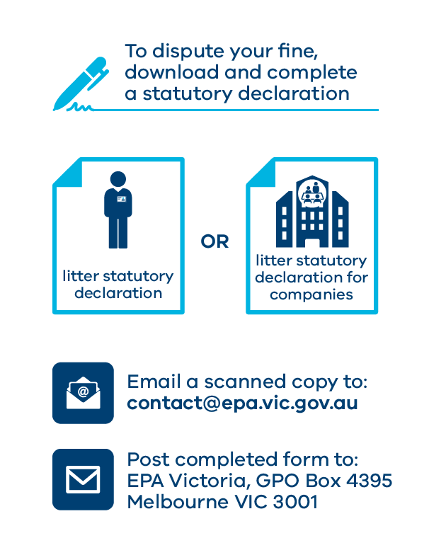 Pay or dispute litter fine infographic